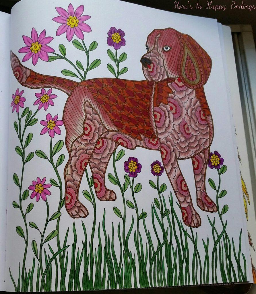 animals - beagle